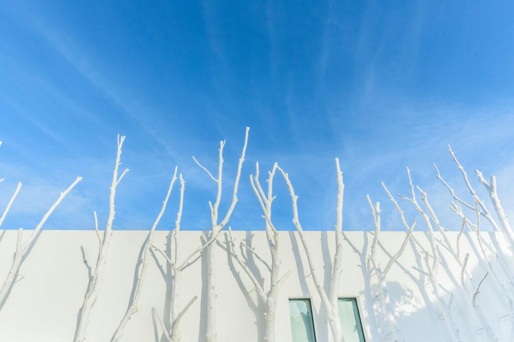 fotografo arquitectura y de interiores hotel