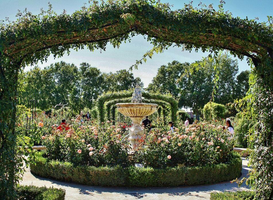 Rosaleda del Parque del Oeste Madrid